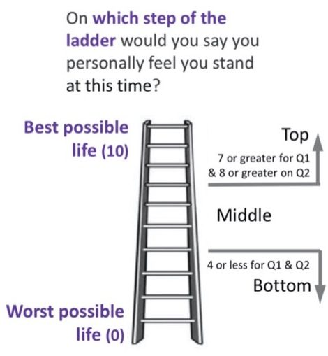 life-ladder-concise